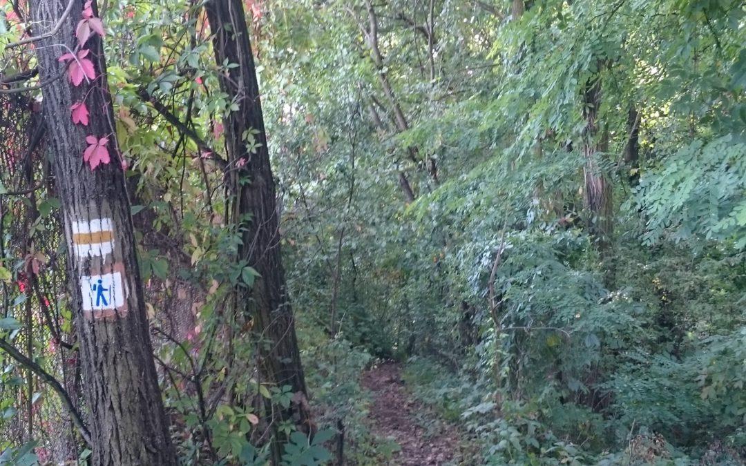 Szeptember 25-én, vasárnap felavatják a Csömöri gyalogos körtúra útvonalát