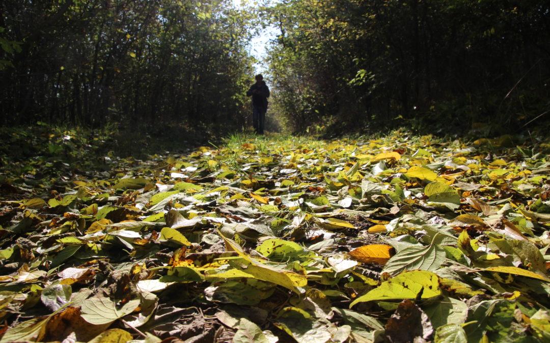 A Körtúra ősszel…