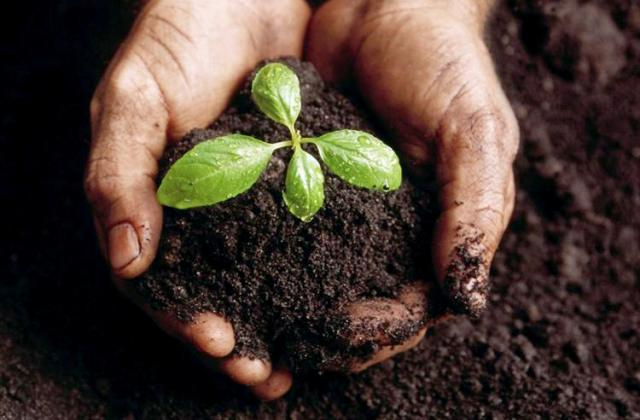 Új, környezettudatos akciókat indított az önkormányzat